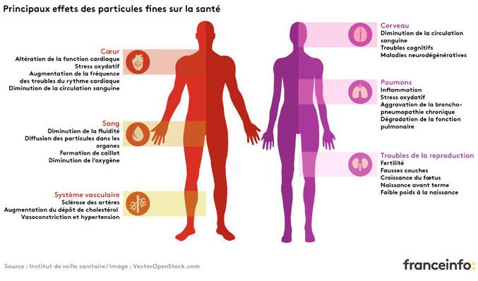 Des conséquences nombreuses et coûteuses sur la santé. Les particules les plus fines sont les plus nocives.