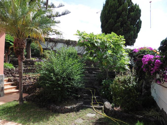 Blick vom Hauseingang auf den Garten