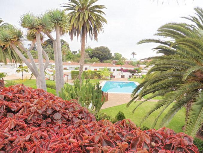 Blick durch die wunderschöne Grünanlage mit dem Gemeinschaftspool in der Mitte von Palmen.