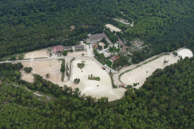 centre équestre de Villeneuve-Loubet - Sébastien parmi les hommes Cécile Aubry