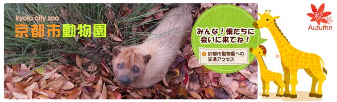 ※京都市動物園 HPより