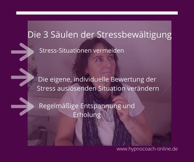 Die 3 Säulen der Stressbewältigung: Stress-Situationen vermeiden;  Die eigene individuelle Bewertung der Stress auslösenden Situation verändern; Regelmäßige Erholung und Entspannung