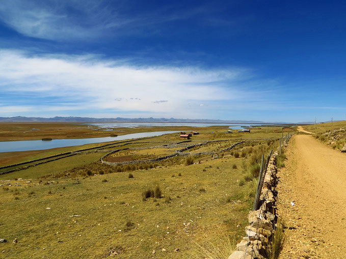 Reserva nacional de Junín