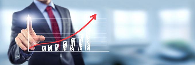 Kapitalgesellschaften wie GmbH`s, GmbH & Co KG`s und weitere mehr, werden von Steuerberater Robert Manz bearbeitet