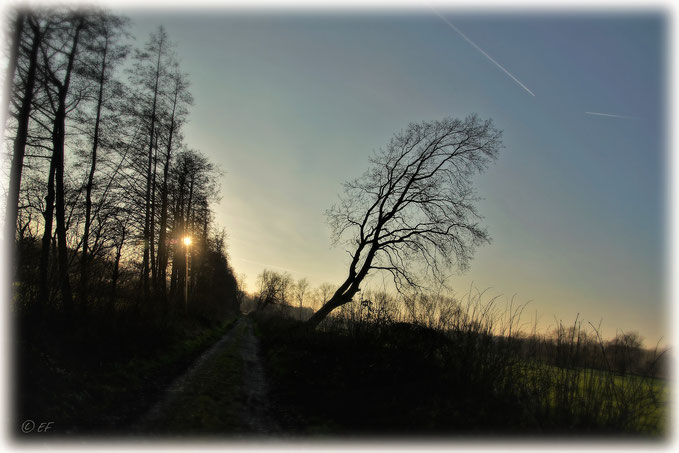 Wenn ein schöner Wintertag sich dem Ende neigt