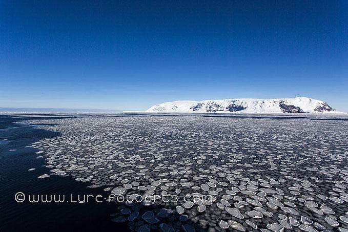 17. Febraury 2013  -  Antarctica, Coulman Island, Pancake Ice