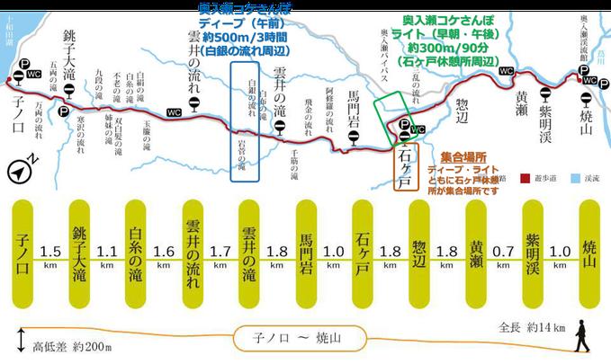奥入瀬渓流コケさんぽ コース