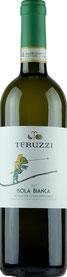 Vernaccia di San Gimignano (Bodega Teruzzi-Toscana) 16,00€