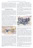 Amtsblatt Wünschendorf 29.04.2017, S.19