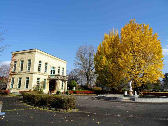 鏡石町 岩瀬牧場と牧場通りの桜