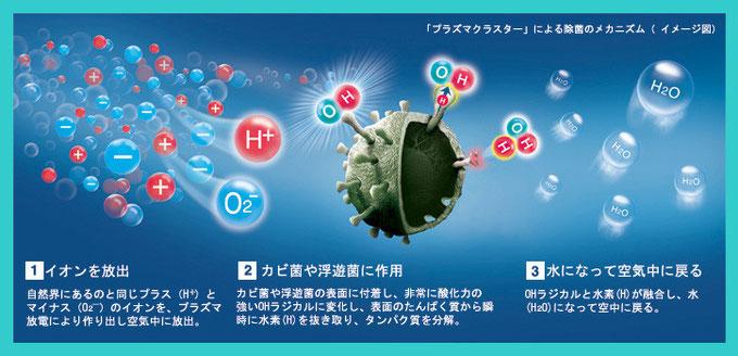 プラズマクラスターによる除菌のメカニズム