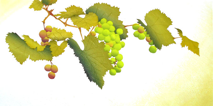 Grape-3  40x80cm