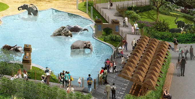 Зоопарк в Хьюстоне