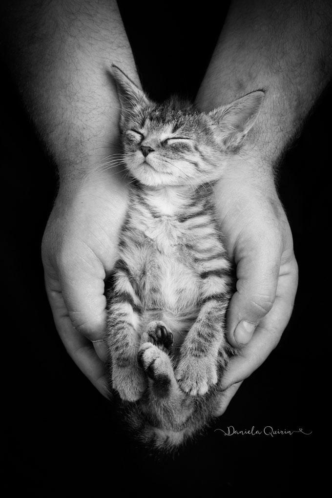 Ein tierisches Babyshooting #ganzverliebt