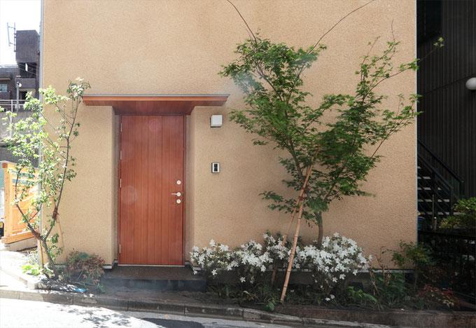 そとん壁の外壁に植栽の緑が映えます