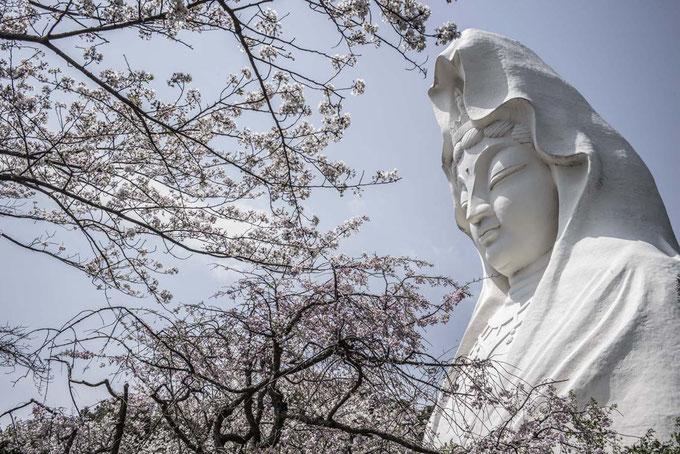 Ofuna Kannon Tempel in Ofuna, Japan als Farbphoto