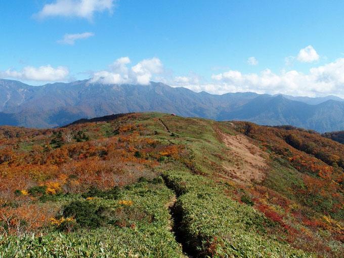 赤兎山から紅葉の始まった展望台を望む。