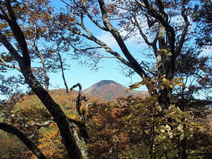 もう何年も登ってない大長山 :そう言えば今日登山口で一緒だった女性たちは大長山に向かったなぁ・・・