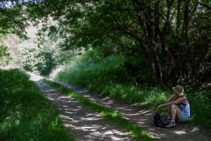 Chemin de petite randonnée sur Mont bouges
