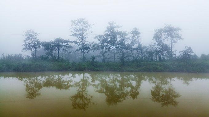 Niebla en Sapa