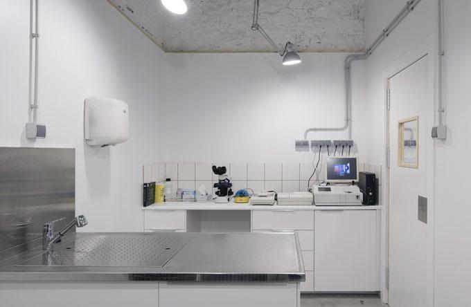 Laboratorio Veterinario Citología, Bioquímica, Hemograma, Urianálisis