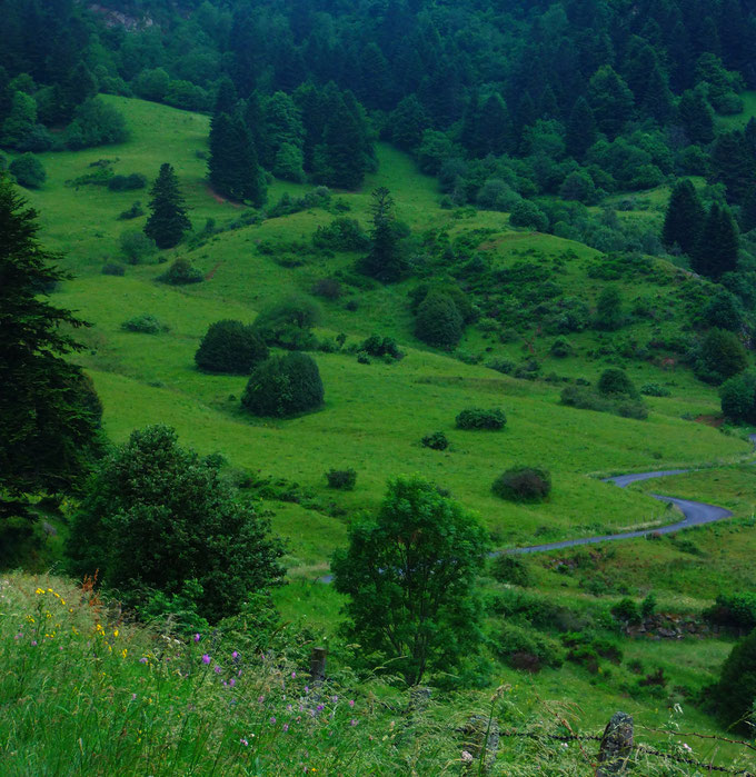 vacances écologiques en Auvergne
