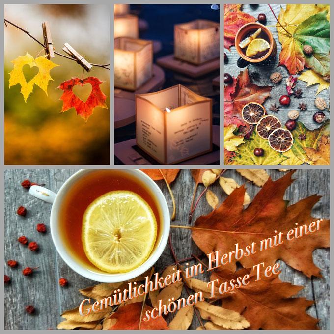 Lass dich von unseren würzig-feinen Teesorten beflügeln und von innen wärmen