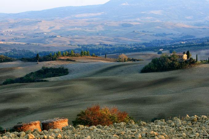 Val d'Orcia. Uno dei tipici paesaggi della zona. L'Orcia DOC è il vino che viene prodotto in questo territorio