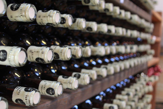 Vinitaly 2018, Etesiaca itinerari di vino blog
