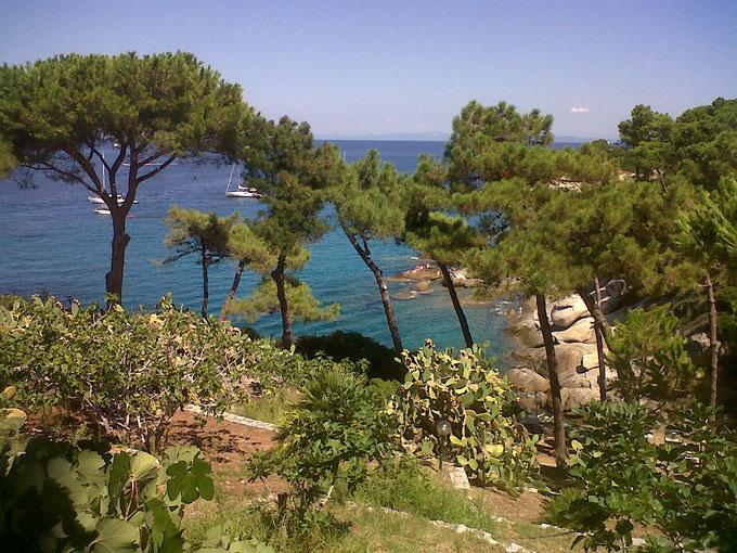 Isola d'Elba. Itinerario di vino. Foto Blog Etesiaca