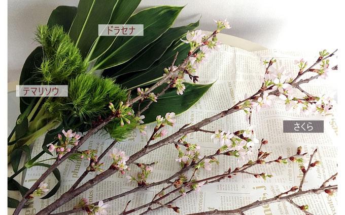 美意識を高める食器とお花の世界 第6回 おうちでお花見、桜を飾ってみよう! ③