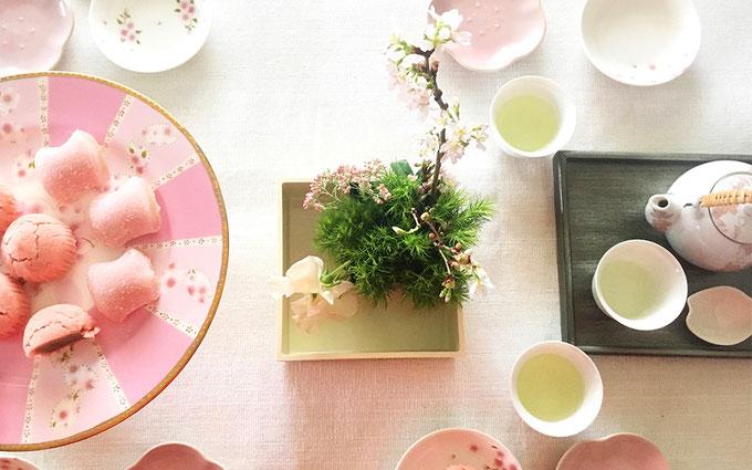 美意識を高める食器とお花の世界 第6回 おうちでお花見、桜を飾ってみよう! ㉔