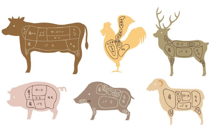 牛、豚、鶏、肉の部位はこんなに!?覚えておきたいメジャーなお肉の部位