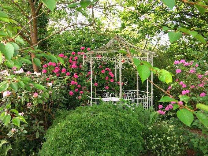 Rhododendron-Blüte am Pavillon, Helenenweg-Garten in Kirchen