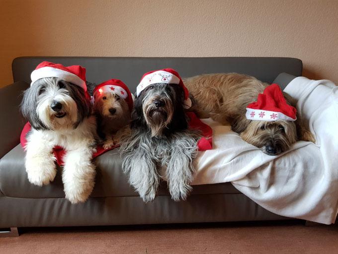 Wir wünschen allen Verwandten, Freunden und Bekannten einfrohes Weihnachtsfest und ein gesundes,glückliches und erfolgreiches Jahr 2018
