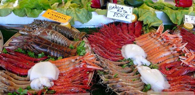 mmmh.. Mariscada in einem der zahlreichen Restaurant  im Hafen von Calpe