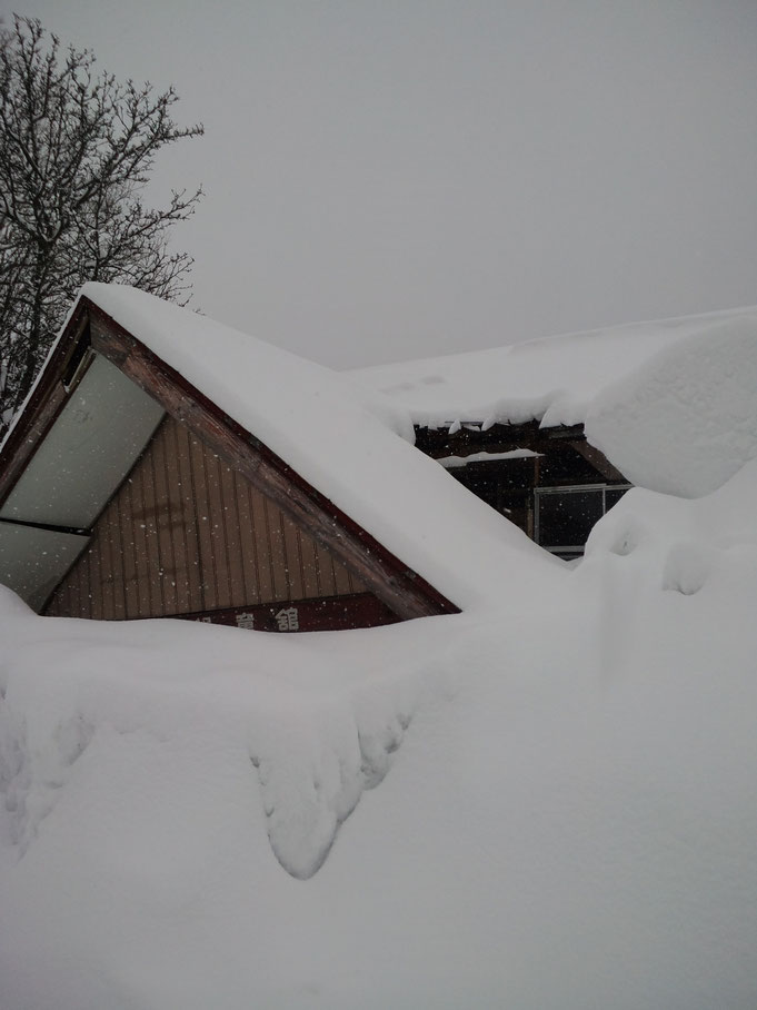 The house is also buried without snow remove.
