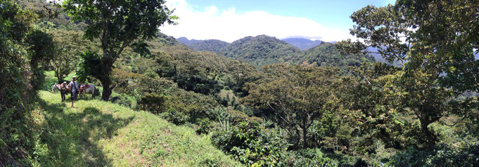 Farm La Esperanza in Panama (Quelle: Woyton)