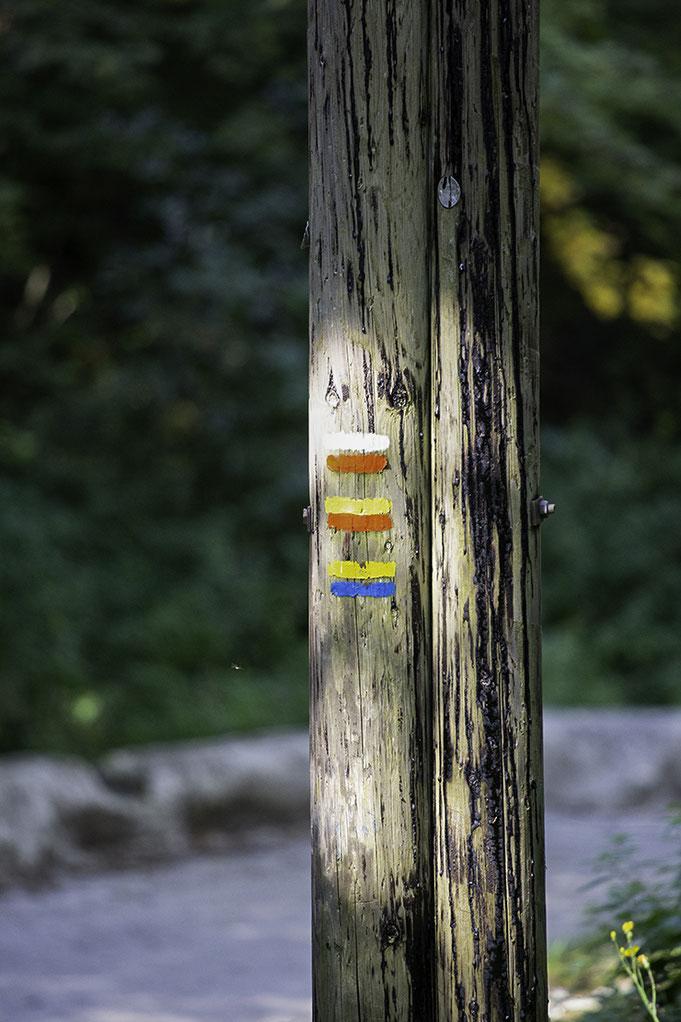 Telegrafenmast mit Wegemarkierungen im französischen Jura. Siegfried Beiser Photography.