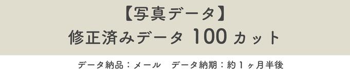 【写真データ】修正済みデータ100カット※データ納品:メール※データ納期:約一ヶ月半後