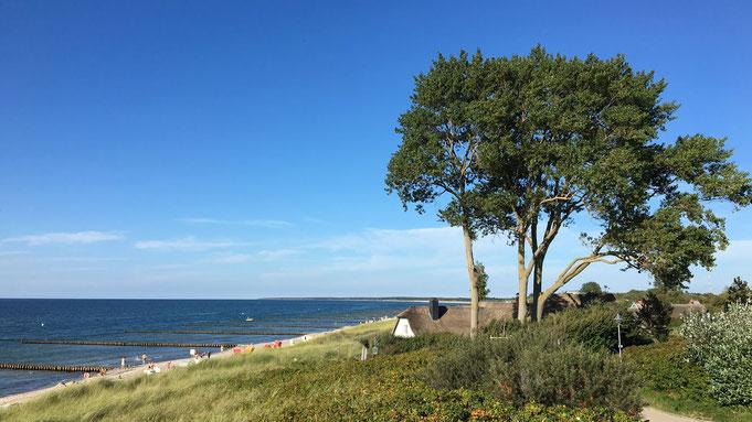 Mit dem Trecker an die Ostsee