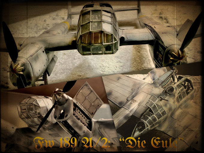 "Focke Wulf Fw 189 A/2 "" Die Eule "" Great Wall Hobby kit 1/48 scale model"