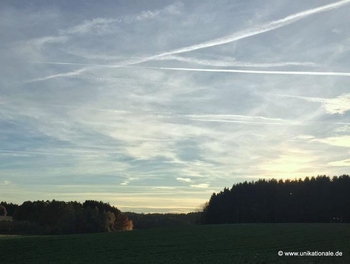 Herbst bei Reichertshausen 2