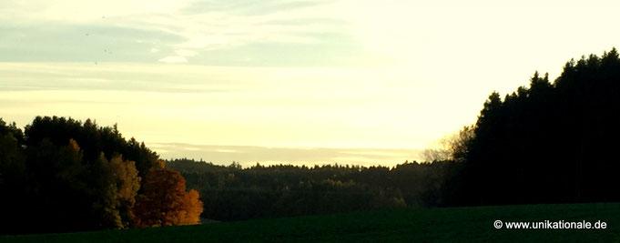 Herbst bei Reichertshausen 1