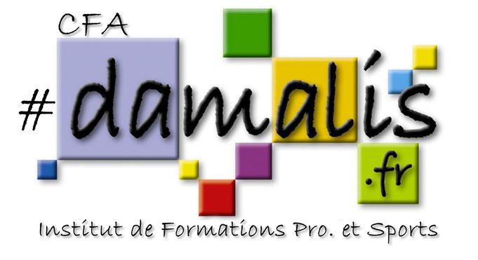 Nouveau logo du CFA institut du sport à Pau