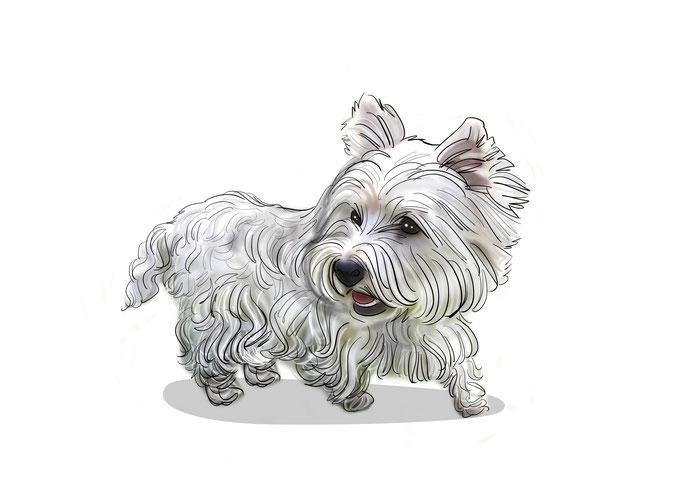 Portraitzeichnung, Portrait Hund