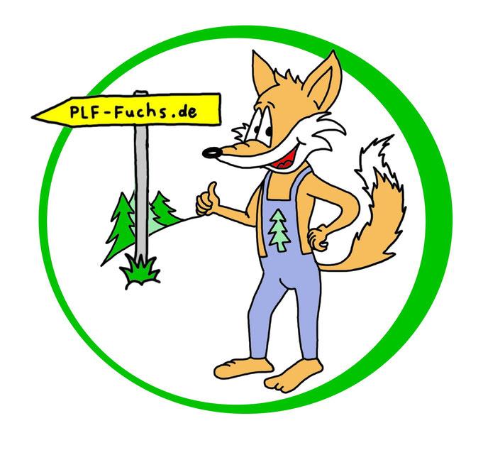 Logo erstellen lassen, Fuchs, Sympathiefigur
