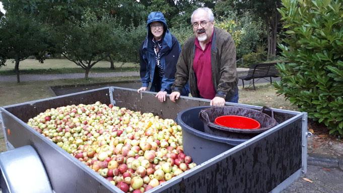 """Dies ist das Ergebnis der Apfelernte 2019 von den """"Partnerschaftsbäumen"""" am Falkensteiner Bürgerhaus.... und das wurde daraus:  155 Liter feinster süßer Apfelsaft !!"""