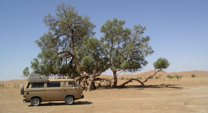 2004 MAROKKO - SAHARA