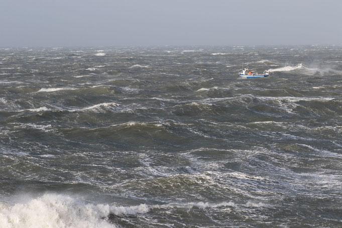Küstenerosion Normandie Urlaub Hunde Cotentin Gouville